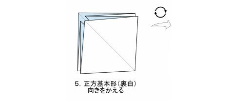 やさしいコスモス 花弁 図5