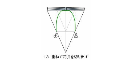やさしいコスモス 花弁 図13