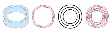 トーラス(円環)構造とその薔薇のイメージ